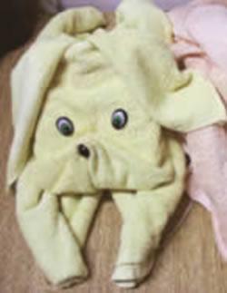 Origami de Cachorro em toalha