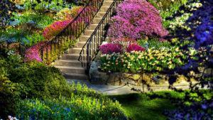 Monte um Jardim com Plantas Perfumadas