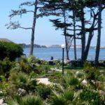 Jardins de Beira Mar: Jardins para Áreas Litorâneas