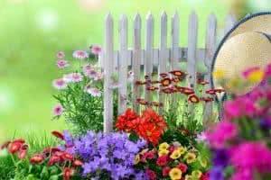 flores cerca
