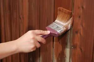verniz porta madeira