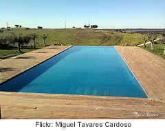 Localização e paisagismo da piscina…