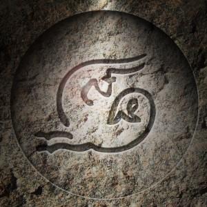 Horóscopo e previsão 2014 signo de Capricornio