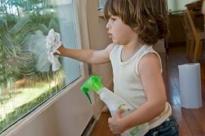 JANELAS / VIDROS . Como fazer uma boa limpeza dos vidros?