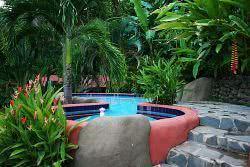 piscina com plantas tropicais