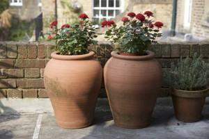 Vasos de ceramica de Roseiras
