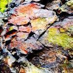 Efeitos do excesso de minerais no organismo!