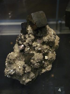 Efeito da deficiência de minerais no organismo