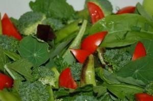 Alimentação saudavel, como comer bem e sem complexo!