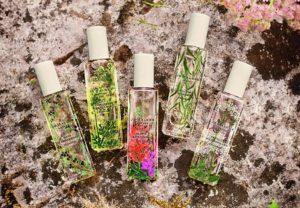 Plantas que Compõem os Melhores Perfumes