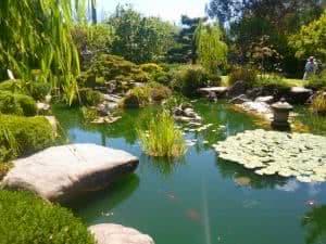 lago jardim