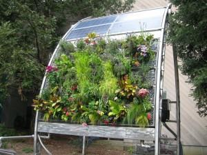 Horta Hidropônica - painel hidropônico