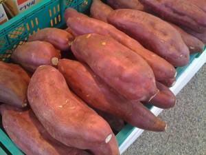 Batata doce (Ipomoea batatas)