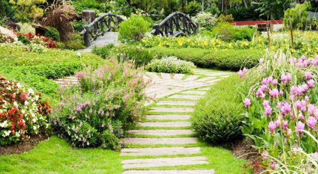 Paisagismo ao Redor de Caminhos do Jardim