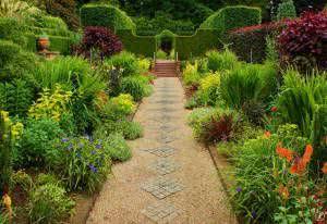 caminho de jardim plantas