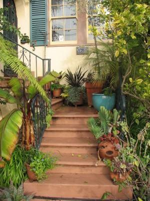 Projetando caminhos no jardim! O espaço comporta o projeto?