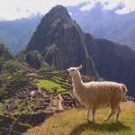 Cameras e webcams por toda a America do Sul