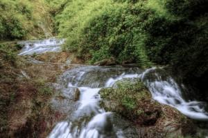 Fontes de agua para sua horta! Como descontaminar a água.
