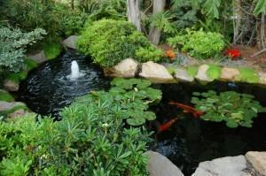 Canto de meditação no jardim, projetando um paraiso…