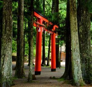 Jardim Oriental e as boas energias. Calma e espiritualidade