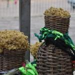Chás Caseiros que Também Curam: Como Fazer