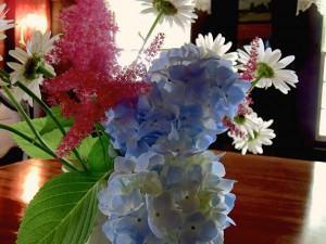arranjo de flores no vaso