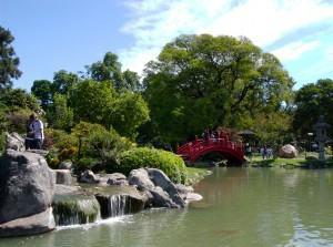 Jardim Oriental – plantas para lagos e cascatas !