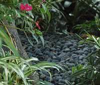 Coberturas de Solo - seixos jardim