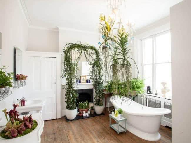 Plantas de Interior para Banheiros e Lavabos # Decoracao No Banheiro Com Plantas