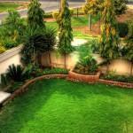 Adubação do gramado