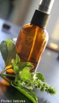 Óleos essenciais  - o oleo basilicum