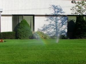 Benefícios do gramado bonito, saudável que valoriza a terra