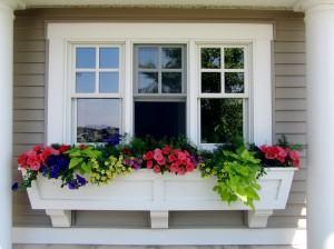 Vasos de janelas