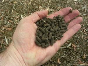 Nutrientes e adubos para equilibrar e enriquecer o solo!