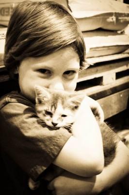 Filhote de gato ... amor eterno