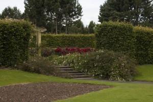 Muros de arrimo com vegetação