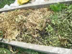 pH do solo e os  fertilizantes organicos