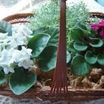 Arranjos de Flores com Vasos
