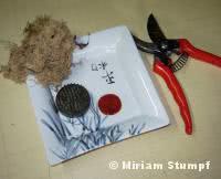 ikebana materiais