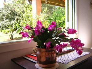 Arranjos de flores cachepot decorativo