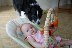 bebe e o cachorro