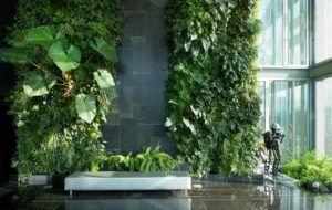 jardim vertical de interior