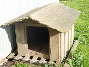 casinha do cachorro de madeira