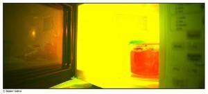Vazamento ou fuga em seu microondas