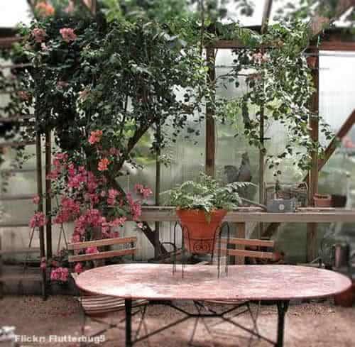 objetos decoracao jardim : objetos decoracao jardim:Jardim de Inverno ou Poço de Luz: Jardins Internos em Casa