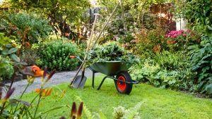 jardim carrinho de mão