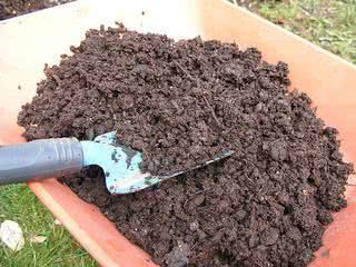 composto organico para horta