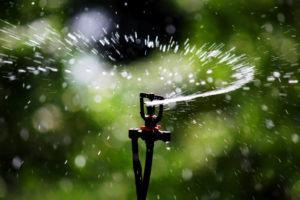 Sistemas de Irrigação para Horta e Jardim