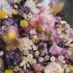 Como desidratar flores e como secar pétalas