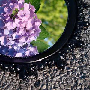 espelho flores